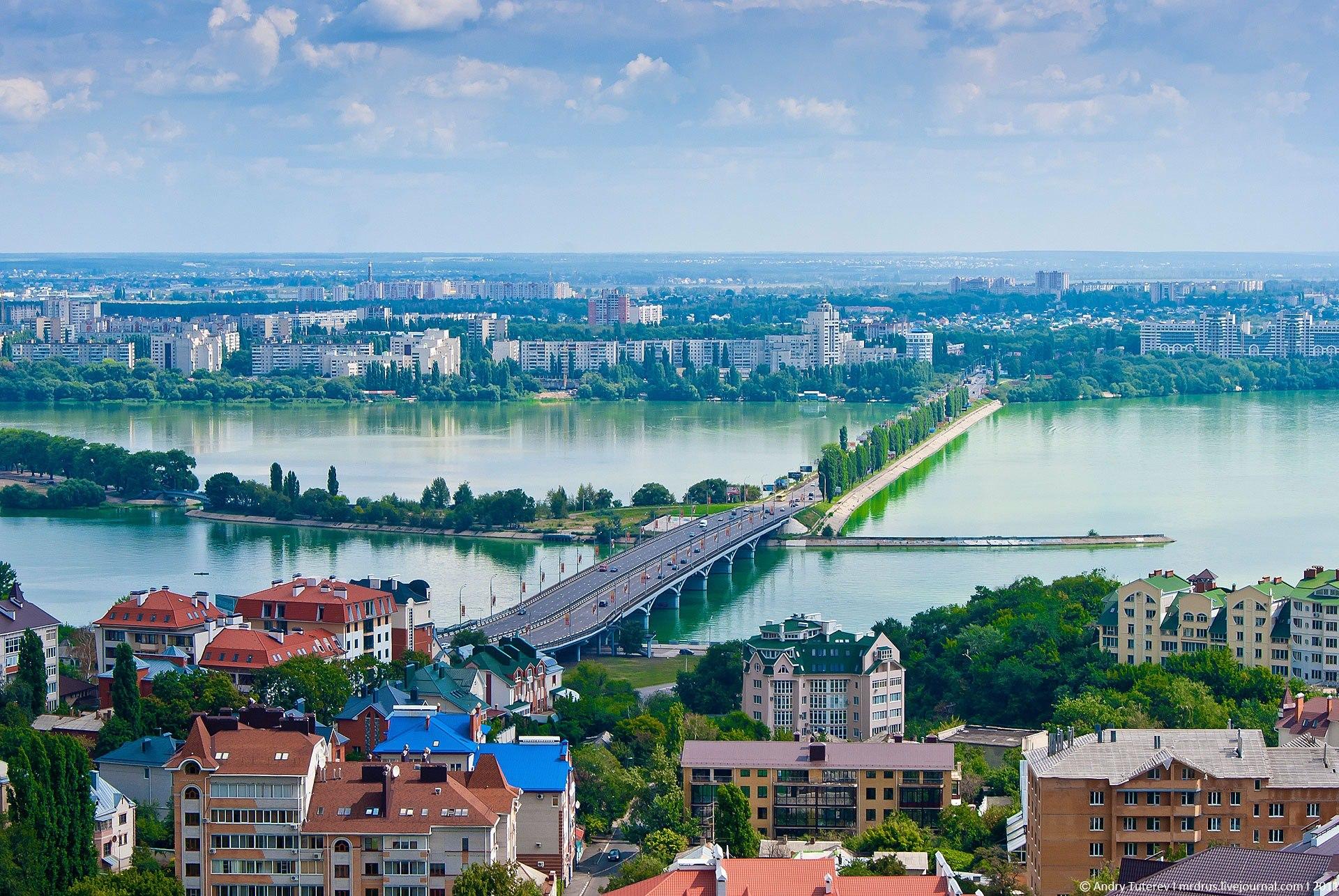 Под Воронежем с землей сравняли 20 га заповедного леса